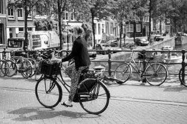 AMS_CycleLYF_120716